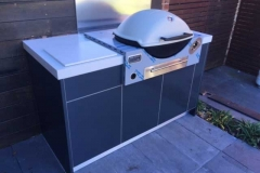 Weber Family Q Built In